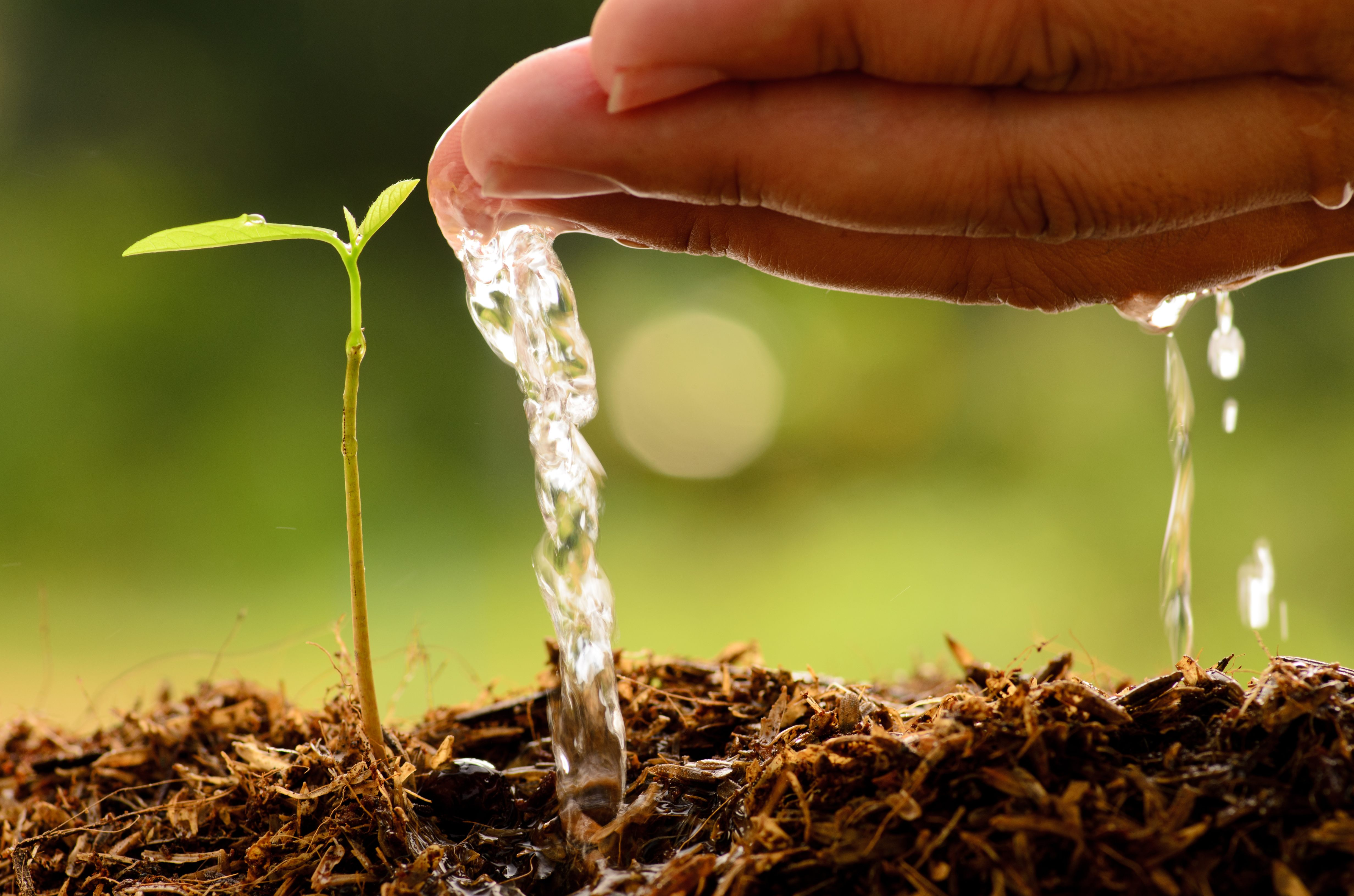 Water Purification Systems for Agriculture applications